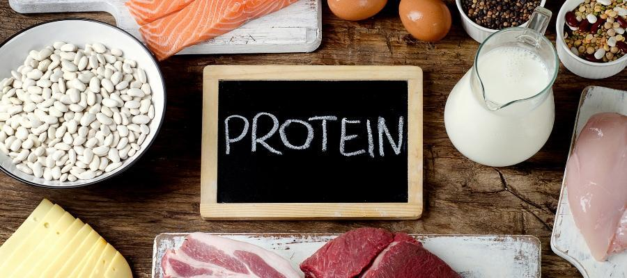 diabetes and protein