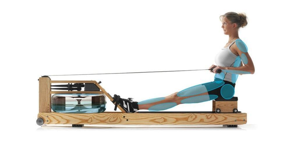 Water Rowing Machines
